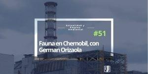 Carátula del programa Fauna en Chernobil, con German Orizaola