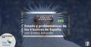 Carátula programa 68: Estado y problemática de los 4 buitres de España, con Eneko Arrondo