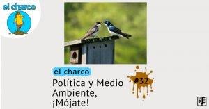 Política y Medio Ambiente, ¡Mójate! | el charco #32