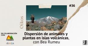 Dispersión de animales y plantas en islas volcánicas, con Bea Rumeu | Oikos #36
