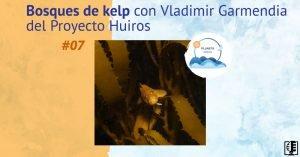 Bosques de kelp con Vladimir Garmendia del Proyecto Huiros | #07 Planeta Agua