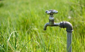 Precio del agua en el mercado de futuros | el charco #41