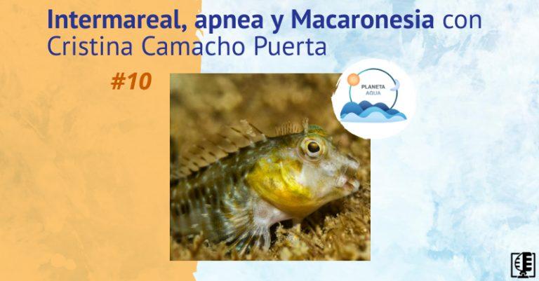 Intermareal, apnea y Macaronesia con Cristina Camacho Puerta | Planeta Agua #10
