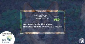 Lecciones desde África para conservar el lobo, con Pablo Manzano | Actualidad y Empleo Ambiental #89