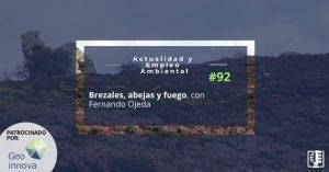Brezales, abejas y fuego, con Fernando Ojeda | Actualidad y Empleo Ambiental #92