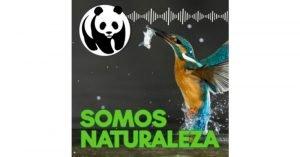 Como agua de mayo 💦 Somos naturaleza. El podcast de WWF España 🐼 #03